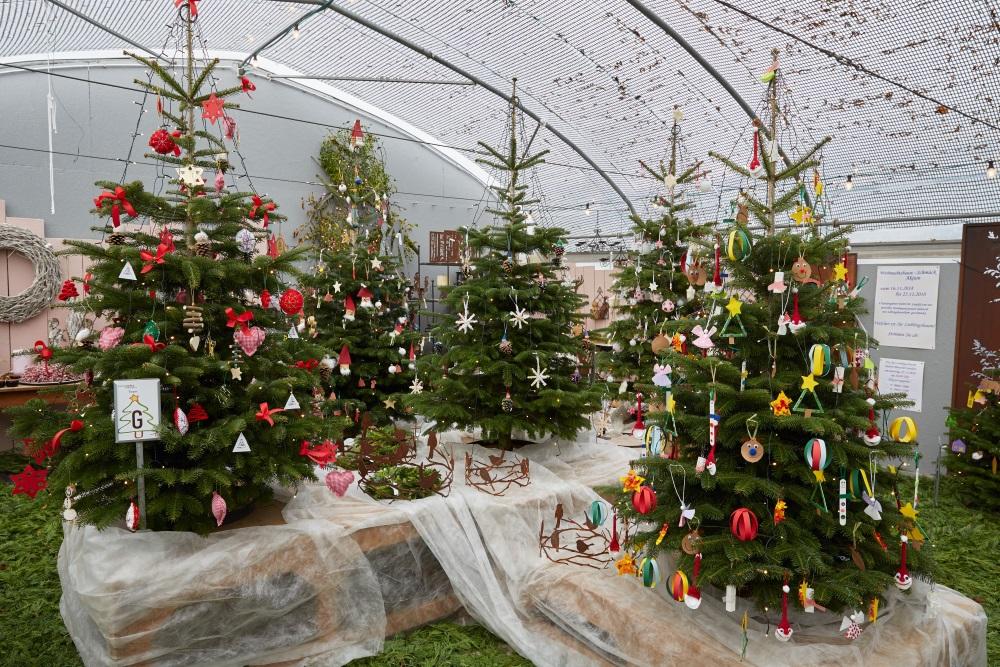Weihnachtsbaum-Schmück-Aktion